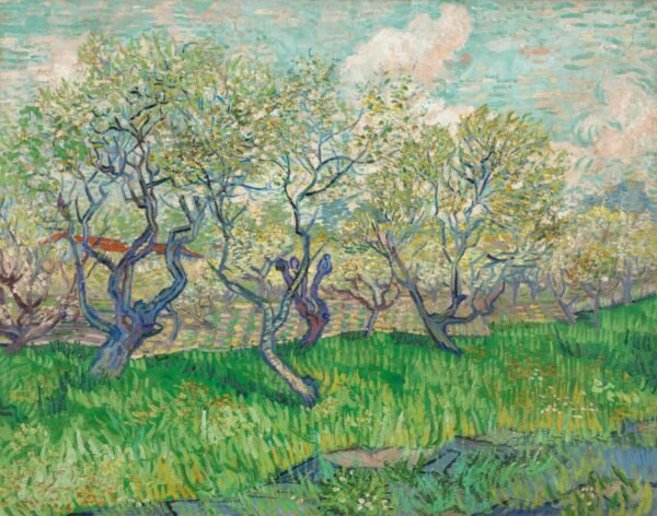 Photo of Orchard With Blossoming Plum Trees By Vincent van Gogh