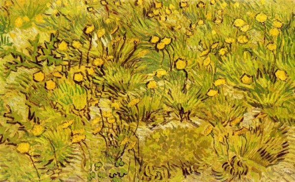 Photo Of Painting Of Yellow Flowers
