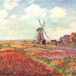 Photo of Windwill in Fields of Tulip